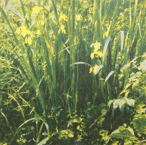 Yellow Iris | acrylics |60x60cm | 2020