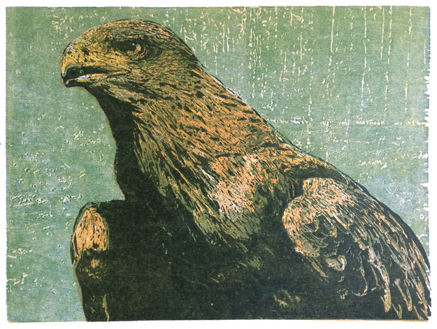 Golden Eagle | woodcut | 30x40cm | 2020 ©