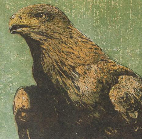 Golden Eagle | woodcut | 30x40cm | 2020