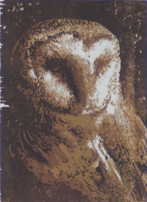 Barn Owl | woodcut | 13x18cm | 2020
