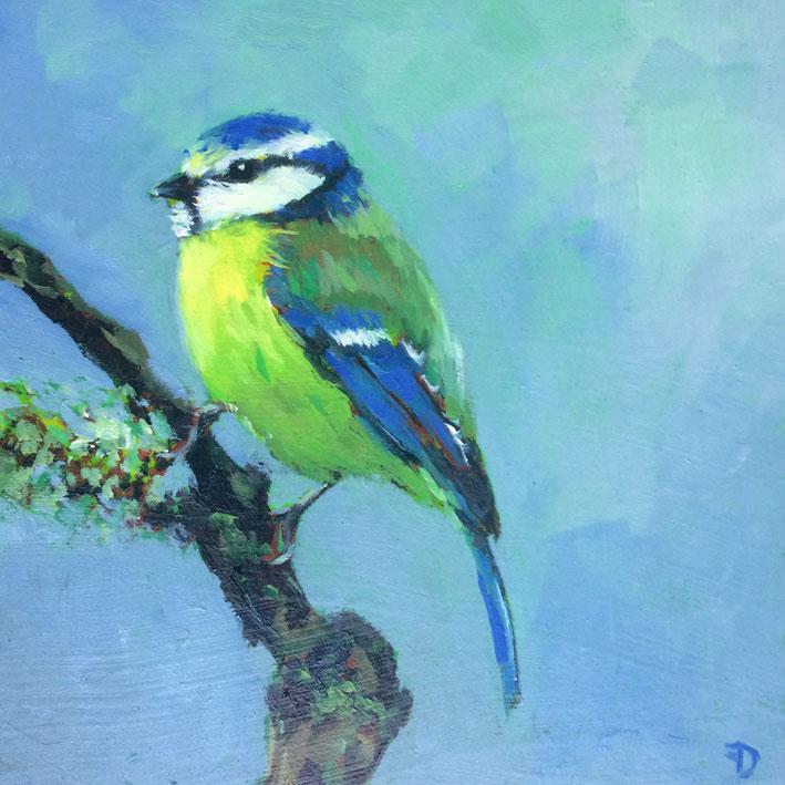 Blue Tit | oil painting | 15x15cm | 2021 (sold)