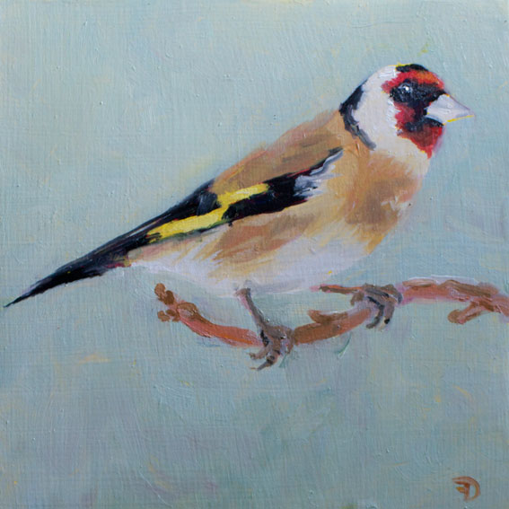 Golden Finch | oil painting | 15x15cm | 2021 (sold)