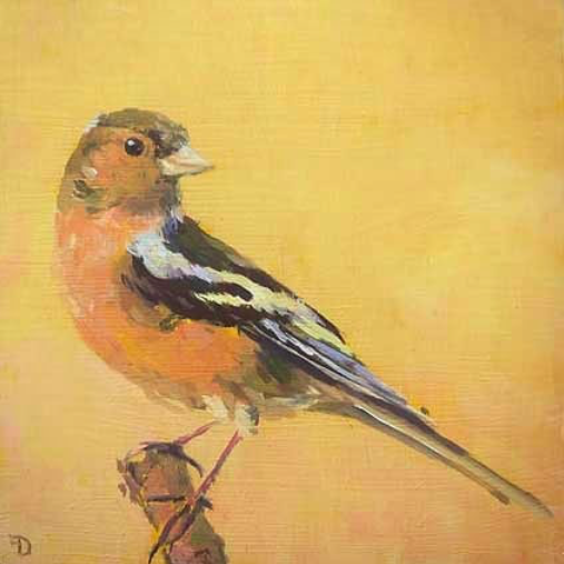 Finch | oil painting | 15x15cm | 2021