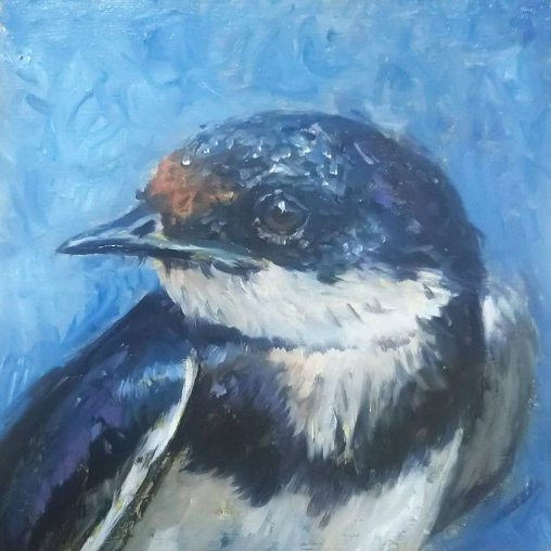 Swallow | oil painting | 15x15cm | 2021