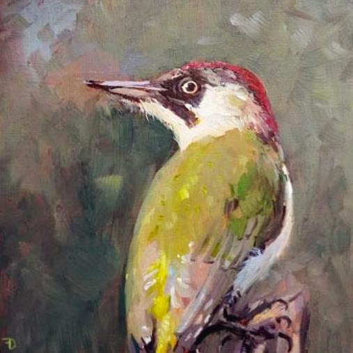 Green Woodpecker | oil painting | 15x15cm | 2021