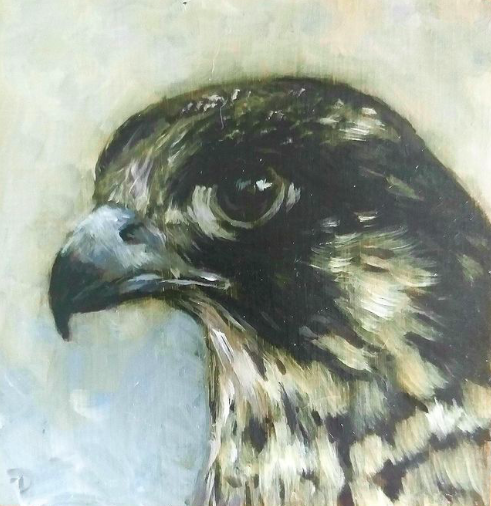 Falcon | oil painting | 10x10cm | 2020 (in stock Galerie Posthuys)