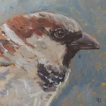 Sparrow | oil painting | 10x10cm | 2021