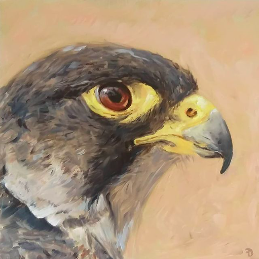 Falcon | oil painting | 27,5x27,5cm | 2021 (sold)